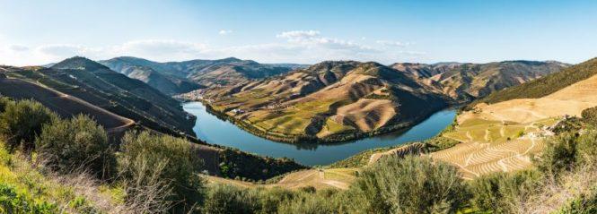 L'or_du_Douro